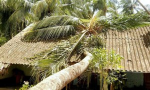 Cyclone Phailin 1